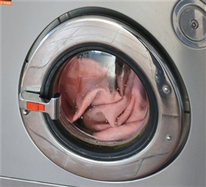 washer machine